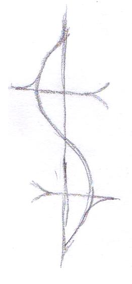 Image0178